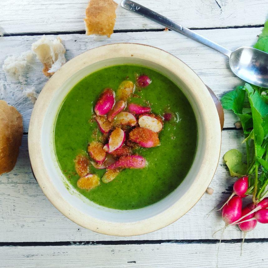 Zupa krem z liści rzodkiewki- wiosenne rarytasy:)