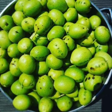 Zielone orzechy włoskie w syropie